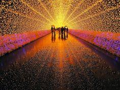 Japans Tunnel of Lights 8 #tunnel #light #japan #installation