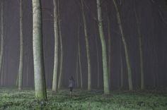 Ivan Peroni #trees