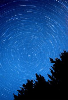 August Startrails Circa 1983 The Photo Roll of Owen Perry #space #star #trails