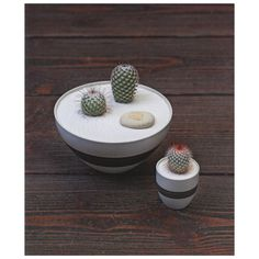The Plant Recipe Book #design #bowl #product #art #cactus #plant