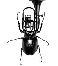Exotic Bug Instruments Redefine Design Norms - My Modern Metropolis #white #trumpet #exotic #black #insect #beetle #photography #and #instruments