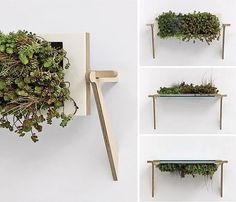 nadeau06.jpg 550×472 pixels #planter