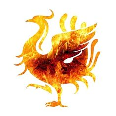 ZhenVision Blog #vector #icon #firebird #phoenix #chinese #illustration #texutre #logo #animal