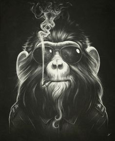 Artprint, monkey, smokeing