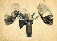 Behance :: Editing Digital Illustrations #illustration #nature #moose #music #mountains #chimera