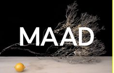 MAAD, inspiration N°281 published on The Gallery in date August 4th, 2015. #website #design