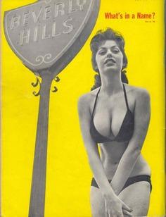 Erotica and Vintage Pulchritudes at fluffyfollies
