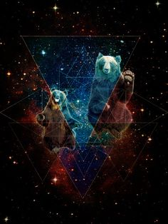 Bears in Space #illebas