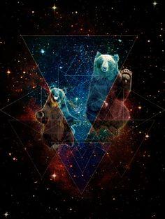 Bears in Space