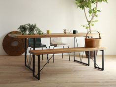 indoor plants #steel #bench #wood #furniture #table
