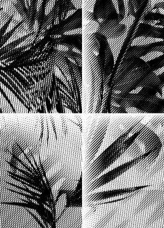 laurajouan http://laurajouan.tumblr.com
