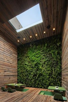 Vertical Gardens | Live Colorful #theme