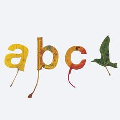 studio-gloeilamp-type-leaves.jpg 500×500 pixels #cut #letters #typography #bird #abc #leaves