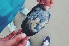 #beach #summer #seaside #sea #seashell #details #hands #holiday #explore #coast #folk #nature