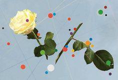 HUH. - Visualised Perfumes by Luke Norman & Nik Adam #cut #flowers #circles