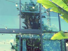 """Bulbs""Venice Beach #house #colorful #landscape #los angeles #color #california #tumblr #picture #photographie #villa #bulbs #califor"