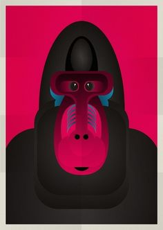 Animals on the Behance Network #vector #print #design #graphic #poster #animals #ilustration