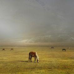 Landscape Photographer Edmondo Senatore