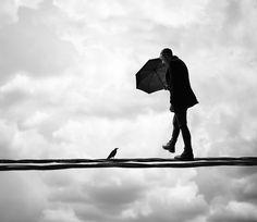 BLVK #sky #umbrella #bird