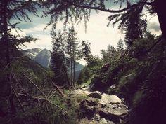 tumblr_kr0ebfAOWB1qz7n7ro1_400.jpg (400×300) #mountain #photography #trees