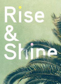 Rise & Shine by Anna Dorfman