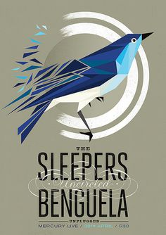 The Sleepers Benguela Uncircled #bird #design #poster #typography
