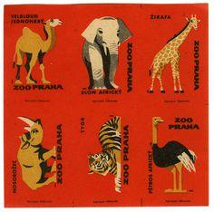 photo #matchbox #zoo #matchbook
