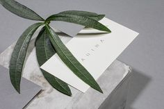 Anima Restaurant branding HOCHBURG Design Stuttgart Germany mindsparkle mag grey eat luxury corporate design stationery identity business ca