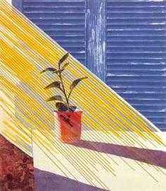 David Hockney, Sun