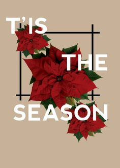 holiday print for blog #print #greetings #christmas #holiday #season #poster #typography