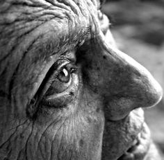 National Geographic's Photography Contest 2010 - The Big Picture - Boston.com #face #photography #blackwhite