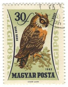 All sizes | Hungary Postage Stamp: owl | Flickr - Photo Sharing! #stamp #owl #illustration #vintage #type #typography