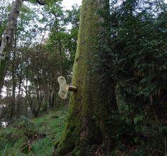 design indaba 2012: the clockwork forest by greyworld #forest #clockwork #art