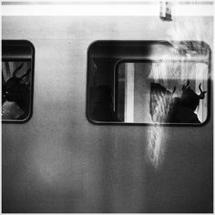 tumblr_lzc0evJkjV1rpqku6o1_r1_1280.jpg 900×900 Pixel #train #white #nieberle #manuel #black #window