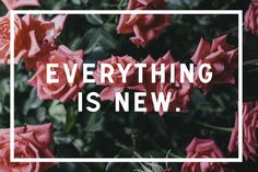 Everything is new.