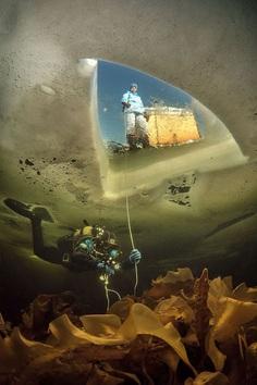 Under Ice, Viktor Lyagushkin