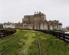 Joel Sternfeld | Friends of the High Line #line #landscape #photography #nature #york #nyc #high #new
