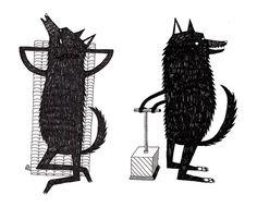 fox, wolf, black