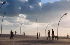 mayslits kassif architects: tel aviv port public space   wins rosa barba european landscape prize