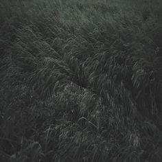 untitled on the Behance Network #photography #landscape #garmonique