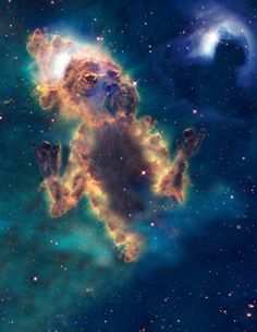 Cosmic Creatures Emerge From Nasas Space Images #nasa #cosmic