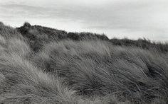 Toutes les tailles | Sand Dunes / Formby | Flickr: partage de photos! #monochrome #dune #photography #sand