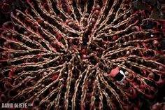 Concurs de Castells by David Oliete #photography