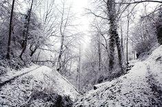 CAROLINE FERAUD » Photographe #photo #bnw