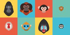 primates family.jpg #illustration #primates
