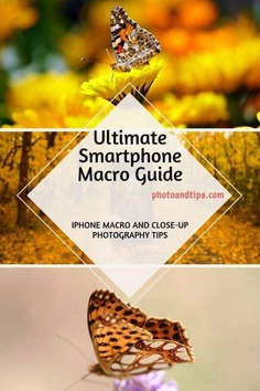 If you are interested to learn the best tips and tactics to deal with the Macro and Close-Up shots, this eBook can guide you better. @photoandtips #photoandtips #smartphonecloseup #iphonemacro #smartphonemacro #smartphonetips #iphonetips #mobiletips #smartphonephotography #iphonephotography #smartphonecamera #smartphonephotographytips #iphonephotographytips #smartphonephoto #iphonephoto #photographytips #photography