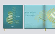 Anjost private investment company. Brand Identity and illustration.