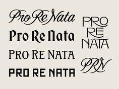 typography, lettering, branding, script, serif, sans serif