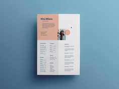 Free Split Style Resume Template