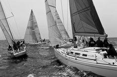 Sailing #ocean #white #black #sailing #and